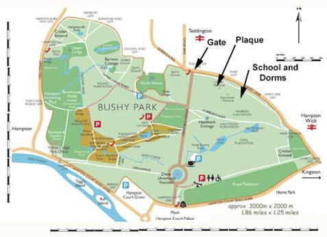 bushy park plano